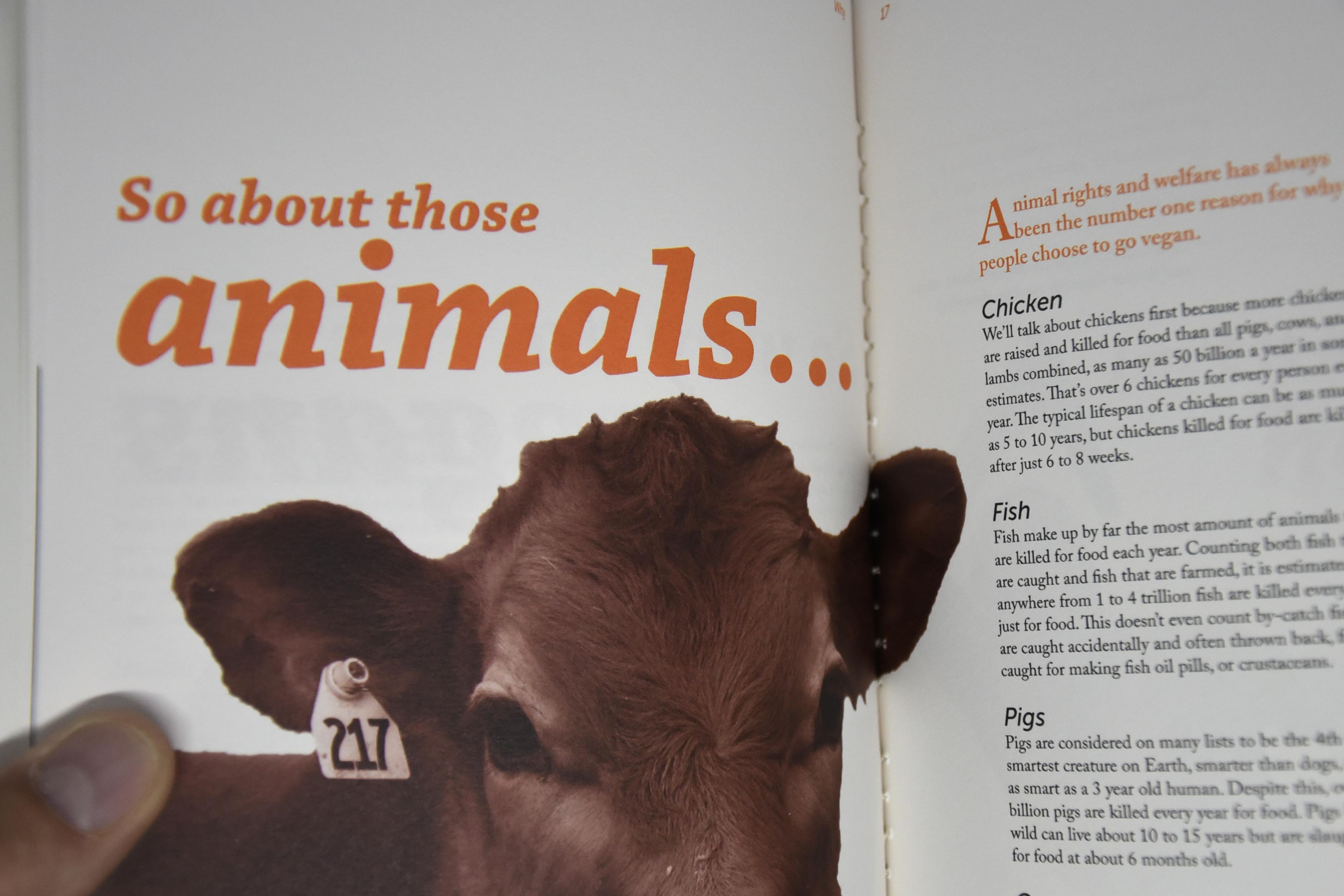 Final Major Project – Veganism
